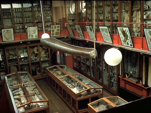 Colour photograph of Museum No. 2 at Kew Gardens, the first museum building to open at Kew, in 1847. This photograph was taken on its closure to the public in 1960 (copyright The Trustees of the Royal Botanic Gardens, Kew)